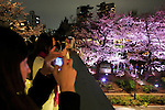 People take pictures of the cherry blossoms in full bloom at Roppongi Midtown on April 1, 2016, Tokyo, Japan. On Thursday, the Japan Meteorological Agency announced that Tokyo's cherry trees were in full bloom, three days earlier than usual, but two days later than last year. The spot starts at the pedestrian bridge in Midtown Tower towards to the Hinokicho Park in Roppongi. (Photo by Rodrigo Reyes Marin/AFLO)