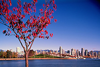"""Vancouver City Skyline, Downtown at Yaletown and """"False Creek"""", BC, British Columbia, Canada, Autumn / Fall - Granville Island and North Shore Mountains (Coast Mountains)"""