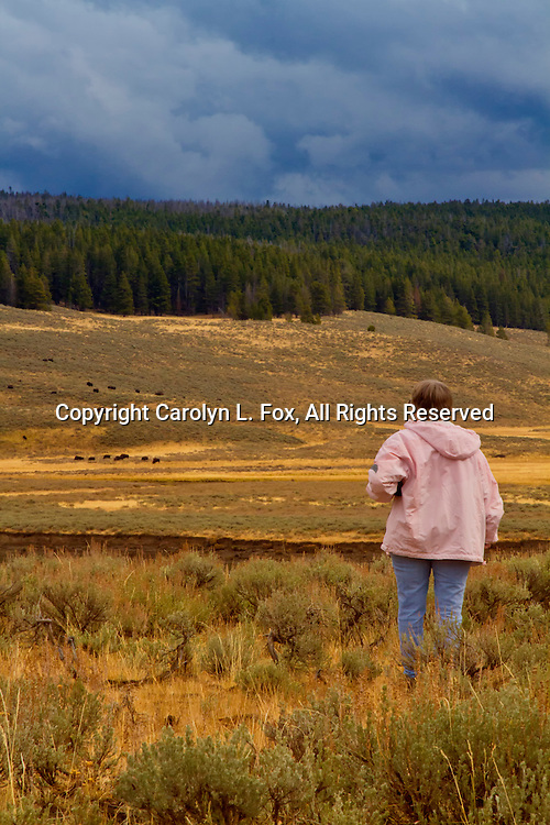 A senior citizent gazes out at the beauty of the Yellowstone landscape.  She's wearing a pink winter coat.
