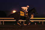 October 24, 2015:  Beholder, trained by Richard Mandella, and owned by B. Wayne Hughes, cross entered in the Breeder's Cup Classic Grade 1 $5,000,000, and the Breeder's Cup Distaff $2,000,000.  Candice Chavez/ESW/CSM