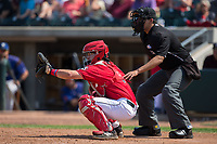 Billings Mustangs catcher Mark Kolozsvary (4) sets a target as home plate umpire Edgar Huerta-Morales looks on during the game against the Missoula Osprey at Dehler Park on August 20, 2017 in Billings, Montana.  The Osprey defeated the Mustangs 6-4.  (Brian Westerholt/Four Seam Images)