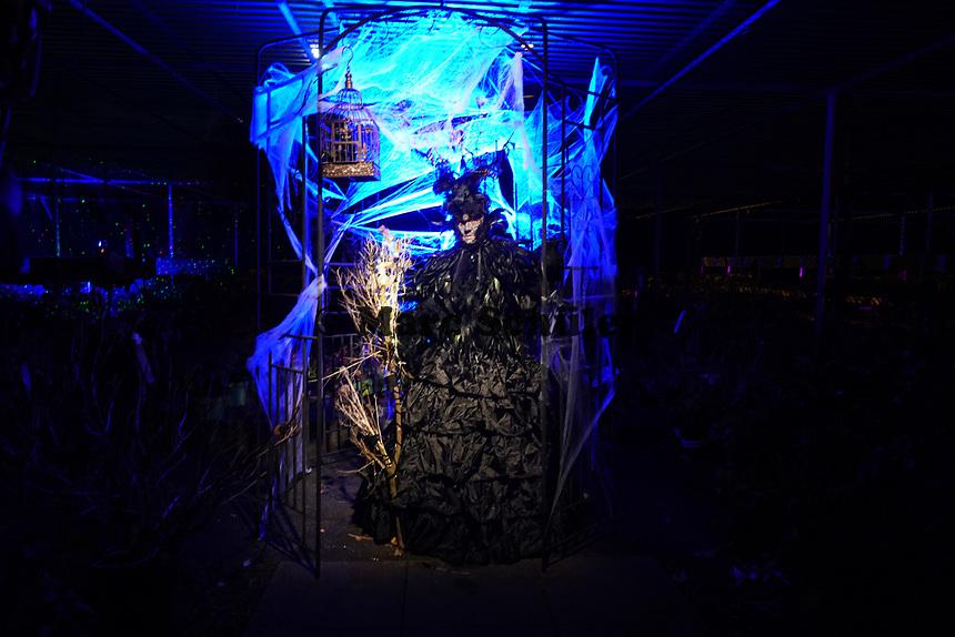 Stationen des Halloween Spukgartens als Alternative zum Spukhaus von Axel und Chris Schüller - Mörfelden-Walldorf 31.10.2020: Hixacrels Spukgarten