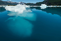 Summer landscape of iceberg above and below water line at Bear Glacier Lagoon in Kenai Fjords National Park.  Kenai Penninsula, Summer, Alaska   <br /> <br /> Photo by Jeff Schultz/  (C) 2019  ALL RIGHTS RESERVED