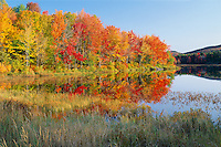 Mill Pond and Goves Mountain<br /> Pillsbury State Park<br /> Sullivan County<br /> New Hampshire, New England
