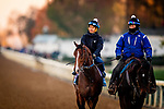 October 31, 2020: Jackie'S Warrior, trained by trainer Steven M. Asmussen, exercises in preparation for the Breeders' Cup Juvenile at  Keeneland Racetrack in Lexington, Kentucky on October 31, 2020. Alex Evers/Eclipse Sportswire/Breeders Cup