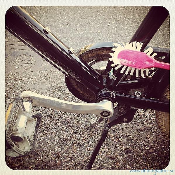 cycle springwashed