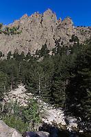 Restonica-Tal bei Corte, Korsika, Frankreich