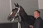 Rachel Alexandra and assistant trainer Scott Blasi in the paddock for the Mother Goose at Belmont Park 6/27/09.