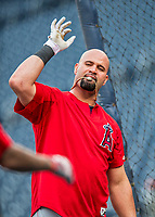 15 August 2017: Los Angeles Angels first baseman Albert Pujols awaits his turn in the batting cage prior to facing the Washington Nationals at Nationals Park in Washington, DC. The Nationals defeated the Angels 3-1 in the first game of their 2-game series. Mandatory Credit: Ed Wolfstein Photo *** RAW (NEF) Image File Available ***