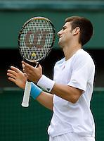 25-6-08, England, Wimbledon, Tennis, Djokovic is frustrated