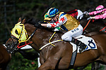 Jockey #8 Nash Rawiller riding Happy Rocky during the race 3 of Hong Kong Racing at Happy Valley Race Course on November 29, 2017 in Hong Kong, Hong Kong. Photo by Marcio Rodrigo Machado / Power Sport Images