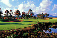 Kiahuna Golf Club course, No. 3, Kauai, Hawaii.  Architect: Robert Trent Jones II