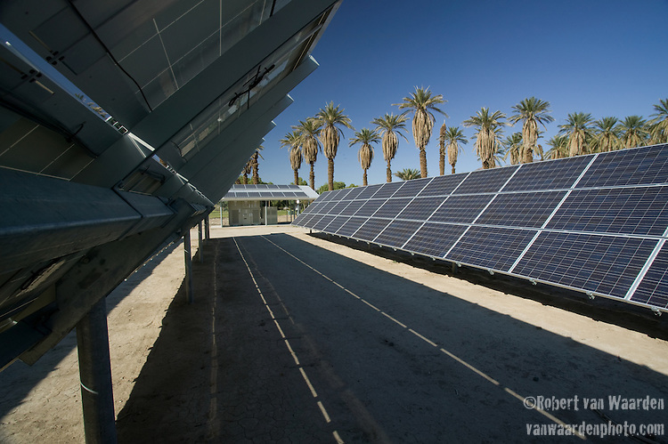 Solar Power Panel Arrary, PhotoVoltaic Cell collection with palm trees in the background. Renewable Energy and the California Solar Initiative.