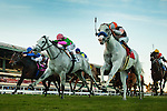 Egg  Drop (right) ridden by Martin Garcia narrowly defeats Discreet Marq ridden by Rafael Bejarano to win the Matriarch Stakes on December 01, 2013 at Betfair Hollywood Park in Inglewood, California .(Alex Evers/ Eclipse Sportswire)