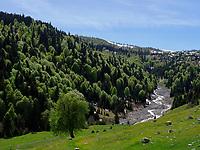 Fluss bei Sarsma-Zarzma,  Samzche-Dschawachetien, Georgien, Europa<br /> River near Sasma-Zarzma, Samzche-Dschawacheti,  Georgia, Europe