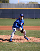 Ethan Roberts - Chicago Cubs 2019 spring training (Bill Mitchell)