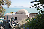 Sidi Bou Said, a charming town near the Tunisian capital, overlooks the sea-green tinged ocean, aloe in the foreground.