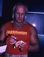 Hulk Hogan 1985<br /> Photo By John Barrett/PHOTOlink