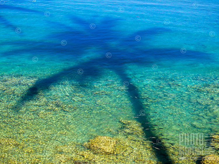 The shadow of a palm tree creates a design on the clear water over a shallow reef in Waikoloa, Big Island.