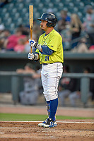 Designated hitter Jay Jabs (21) of the Columbia Fireflies bats in a game against the Augusta GreenJackets on Friday, April 6, 2018, at Spirit Communications Park in Columbia, South Carolina. Columbia won, 7-2. (Tom Priddy/Four Seam Images)