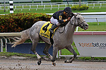 June 29, 2019:  #4 Take Command (FL) with jockey Miguel A. Vasquez on board wins the Carry Back Stakes at Gulfstream Park in Hallandale Beach, Florida, on June 29th, 2019. LizLamont/Eclipse Sportswire/CSM