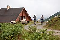 Europe/France/Aquitaine/64/Pyrénées-Atlantiques/Pays-Basque/Iraty: Chalets d'Iraty [Autorisation : 11004] [Autorisation : 11005] départ pour une Randonnée en VTT aux Cromlech's d'Occabé