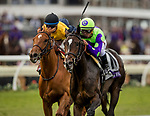 DEL MAR, CA - NOVEMBER 03:  Rushing Fall #11 with Javier Castellano wins the Breeders' Cup Juvenile Fillies Turf at Del Mar Thoroughbred Club on November 03, 2017 in Del Mar, California. (Photo by Alex Evers/Eclipse Sportswire/Breeders Cup)