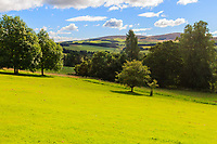 Scottland, landscape, from craigievar castle