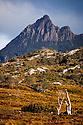 Cradle Mountian Tasmania Australia