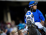 MAY 01, 2021: Essential Quality  and Luis Saez in the post parade before the Kentucky Derby at Churchill Downs in Louisville, Kentucky on May 1, 2021. EversEclipse Sportswire/CSM