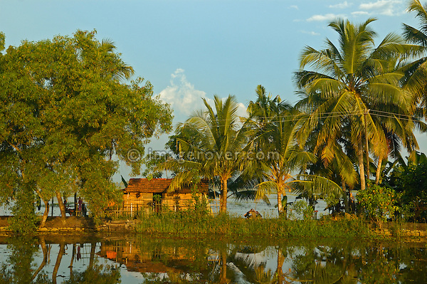 India, Kerala, backwaters. Typical poor family house at a canal in the backwaters close to Allepey. No releases available.