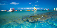 Porto de Galinhas, typical, colorful Ipojuca boats with clear, turquoise ocean water and rocks in the foreground, in Pernambuco, near Recife Brazil