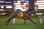 21 July 2012: Silver Max and Robby Albarado win the $600,000 Virginia Derby (gr II) at Colonial Downs in New Kent, Va. Silver Max is owned by Mark Bacon and Dana Wells and trained by Dale Romans.(Susan M. Carter/Eclipse Sportswire)