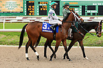 January 16, 2016: Annabelle with Shaun Bridgmohan up in the Silverbulletday Stakes race in New Orleans Louisiana. Steve Dalmado/ESW/CSM