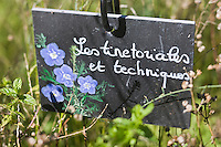 Europe/France/Midi-Pyrénées/46/Lot/Castelfranc: Le Jardin des Sens - jardin d'inspiration médiévale - Ardoise des plantations