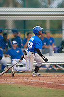 Toronto Blue Jays designated hitter Samad Taylor (48) follows through on a swing during an Instructional League game against the Pittsburgh Pirates on October 13, 2017 at Pirate City in Bradenton, Florida.  (Mike Janes/Four Seam Images)