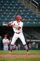 Springfield Cardinals pinch hitter Thomas Spitz at bat during a game against the San Antonio Missions on June 4, 2017 at Hammons Field in Springfield, Missouri.  San Antonio defeated Springfield 6-1.  (Mike Janes/Four Seam Images)