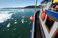 The M/V Auklet sails through bergy bits and brash ice in Glacier Passage,  near Glacier Island, Prince William Sound, Southcentral Alaska on a sunny afternoon in early May. PR