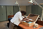 Dr. Emma Mbua, Head of Earth Sciences, at the National Museums of Kenya, returning the skull of Turkana Boy to its storage box Turkana Boy is the most complete skeleton ever found of Homo erectus, an early human dating back 1.5 million years.
