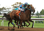 October 18, 2014: Lemon Drop Prize and jockey Corey Lanerie win the 3rd race, maiden for 2 year olds.  Candice Chavez/ESW/CSM