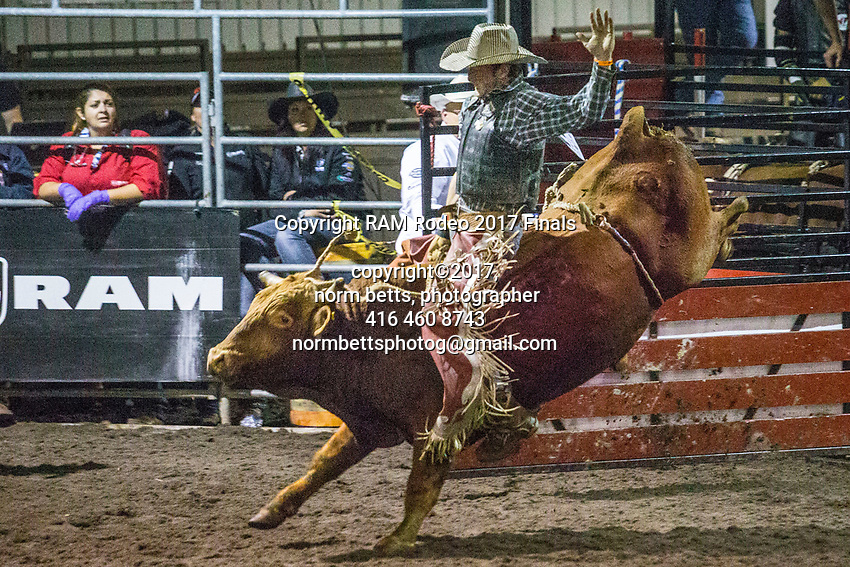 The RAM Rodeo Tour Finals at the RCRA in Newmarket, Ontario, Canada<br />  13, 14 & 15 Oct 2017<br /> <br /> normbetts@canadianphotographer.com<br /> ©2017, Norm Betts, photographer<br /> 416 460 8743
