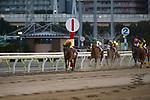 SHINAGAWA,JAPAN-DECEMBER 29: Copano Rickey #3,ridden by Hironobu Tanabe,wins the Tokyo Daishoten at Ohi Racecourse on December 19,2017 in Shinagawa,Tokyo,Japan (Photo by Kaz Ishida/Eclipse Sportswire/Getty Images)