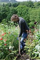 Dan Hoeing amongst Meadow