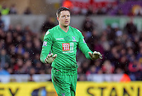 Wayne Hennessey of Crystal Palace during the Barclays Premier League match between Swansea City and Crystal Palace at the Liberty Stadium, Swansea on February 06 2016