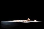 Robot, l'amour éternel<br /> <br /> Texte, mise en scène et chorégraphie Kaori Ito<br /> Danse : Kaori Ito<br /> Collaboration à la chorégraphie :Chiharu Mamiya et Gabriel Wong<br /> Collaboration à la dramaturgie : Julien Mages et Jean-Yves Ruf<br /> Collaboration univers plastique : Erhard Stiefel et Aurore Thibout<br /> Régie générale et lumière Arno Veyrat<br /> Manipulation et régie plateau Yann Ledebt<br /> Son Joan Cambon<br /> Scénographie Pierre Dequivre, Delphine Houdas et Cyril Trupin<br /> Regard extérieur, roboticien Zaven Paré<br /> Compagnie : Association Himé<br /> Lieu : Maison des Arts de Créteil<br /> Ville : Créteil<br /> Date : 24/01/2018