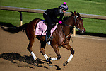 APRIL 28, 2015: Puca, trained by Bill Mott, exercises in preparation for the 141st Kentucky Oaks at Churchill Downs in Louisville, Kentucky. Jon Durr/ESW/Cal Sport Media