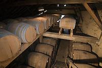 Europe/France/Aquitaine/40/Landes/Labastide-d'Armagnac:Domaine Laberdolive le chai à barriques