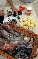 Europe/France/Provence-ALpes-Côte d'Azur/13/Bouches-du-Rhône/Marseille/Les Goudes: Les poissons de Gaby le pêcheur pour la bouillabaisse