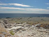 SEA_LOCATION_80064