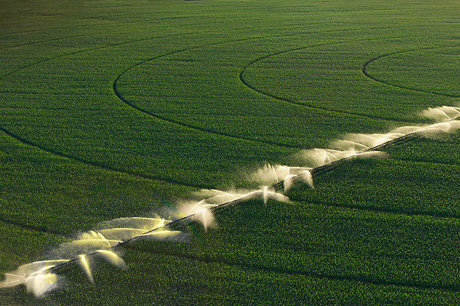 Center Point Irrigation of Crops